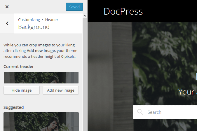 DocPress Customizer